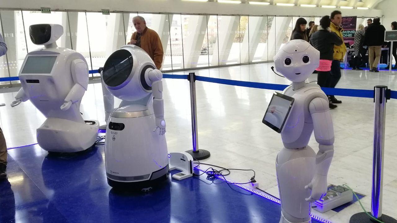 Varios de los robots de la empresa Casual Robots